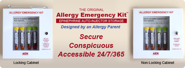 The Original Allergy Emergency Kit - Designed by an Allergy Parent